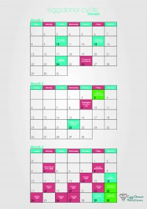 EXAMPLE Egg Donor Cycle Calendar